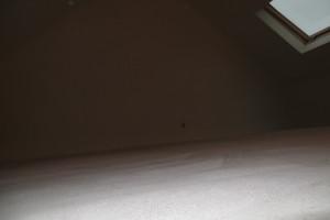 Een donkere zolder word zo een ruimte die niet bij je huis gaat passen.
